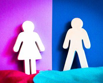 Imagen que representa la igualdad de mujeres y hombres en la educación superior